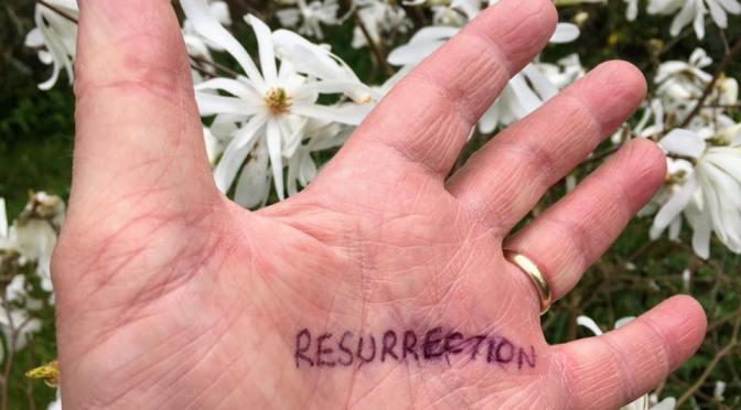 Craig's Sermon – Luke 24:36-48