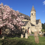 st-johns-with-blossom-1