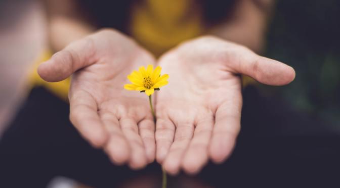 Generosity – Day 2